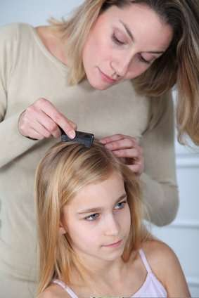 How to get rid of lice naturally