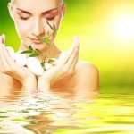 Homemade Anti Aging Skin Care Recipes