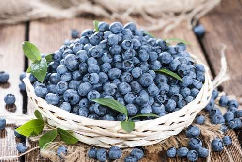 Blueberries Honey Facial Scrub