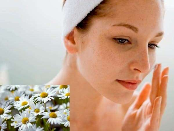 5 Easy Ways To Prepare Chamomile Face Mask At Home